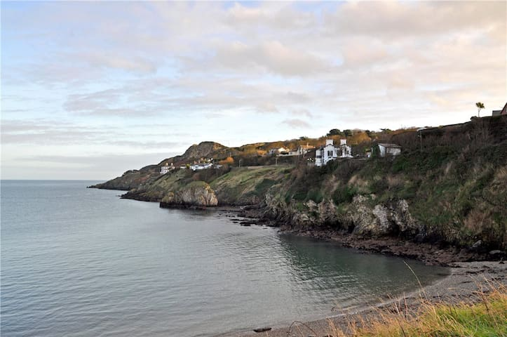 Private double room in beach front apartment! - Howth - Leilighet