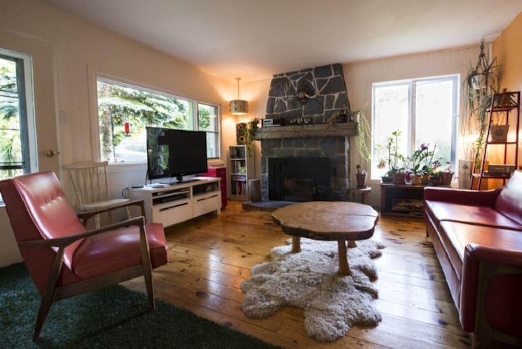 Salon avec foyer au bois