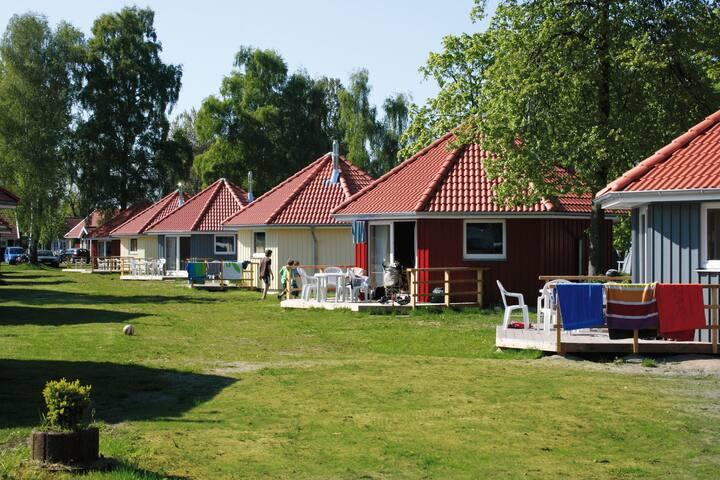 Ferienhaus für 4 Gäste mit 39m² in Ostseebad Boltenhagen (68549)