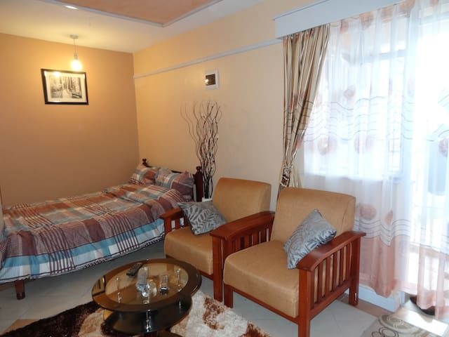 Studio Fully Furnished To Let In Ruaka