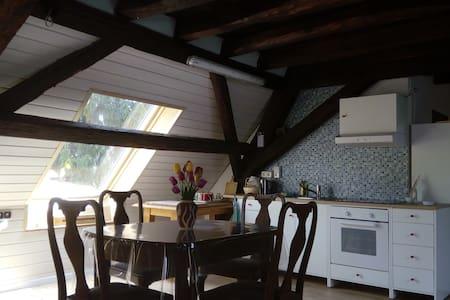 Tolle Dachgeschosswohnung in alter Mühle - Offenbach an der Queich - 公寓