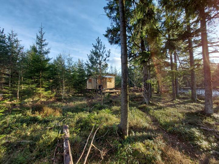 Natur Pur Südschweden Tinyhouse am See