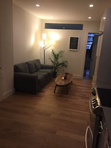 Huge Private Room in Brand New Gramercy Park Apt - New York - Lägenhet