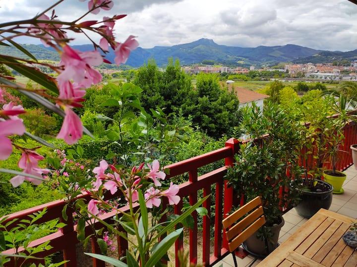 Appartement T2, vue sur les montagnes,  piscine
