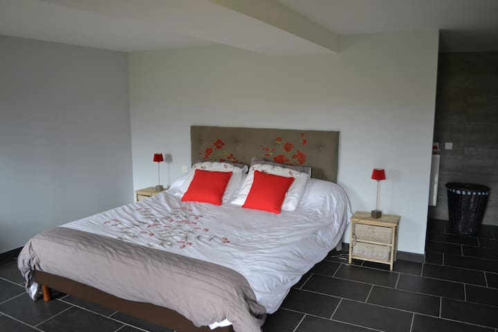 Grande chambre calme, vallée de la loire - Saint-Martin-de-Sanzay - Casa