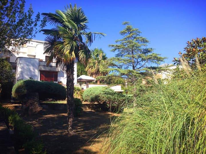 Villa del Sole, Scario