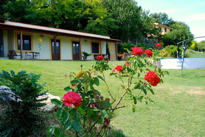Agriturismo la casa nettarina - Poggio Mirteto - Apartmen