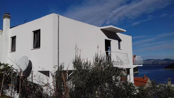 Jednosobni apartman uz plažu Prožurska Luka, Mljet (A-4940-a)