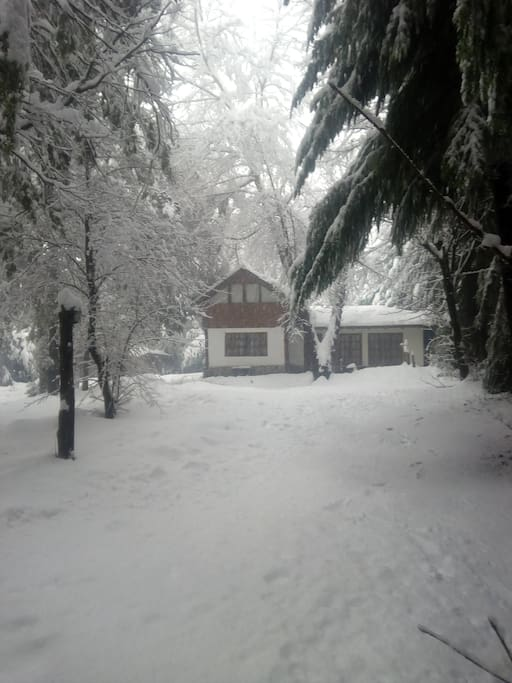 Casa del bosque  Villa la angostura