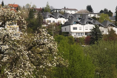 spacious Apartment Bad Soden - Bad Soden