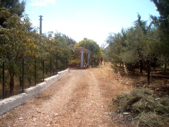 Villa near Castel del Monte, Andria - Andria - Willa