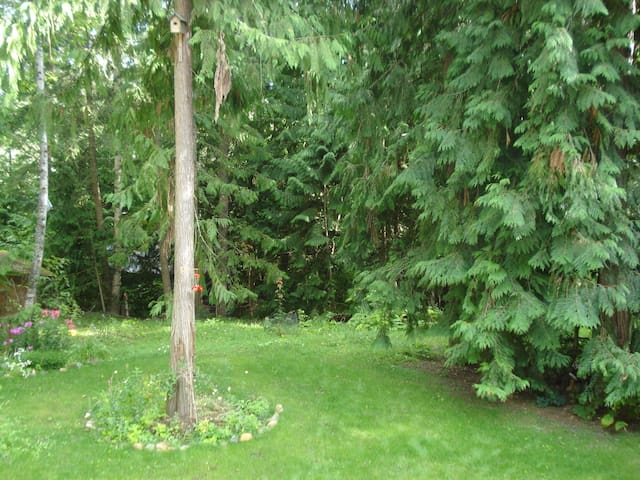 Back to Nature Forest Retreat  - Salmon Arm - Huis