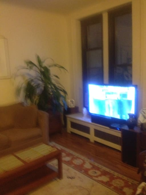 Living room/48 inch tv/very sunny during the day.