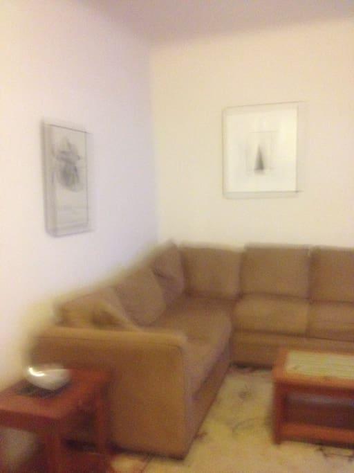 Queen size sleep sofa in the living room.