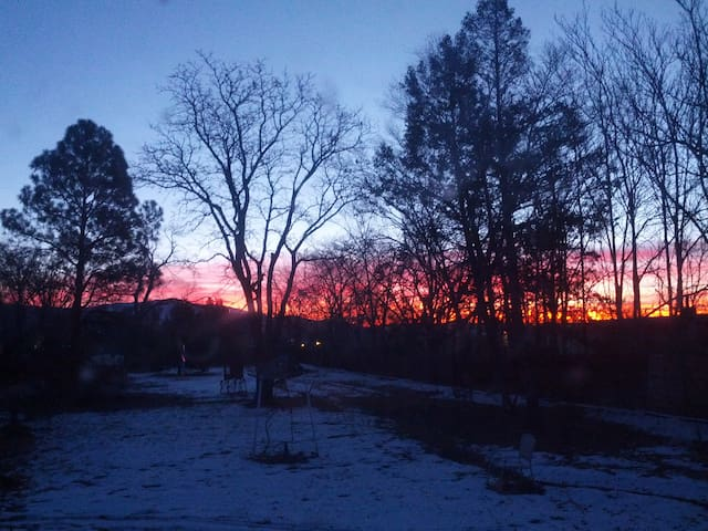 Front Yard Winter Sunrise