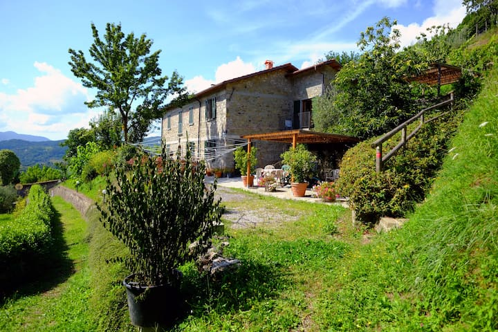 Spacious, Nice view, Pool & Terrace - Castiglione di Garfagnana - Apartment