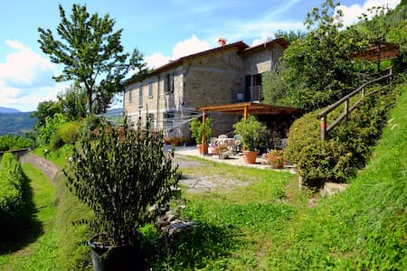 Spacious, Nice view, Pool & Terrace - Castiglione di Garfagnana - Lejlighed