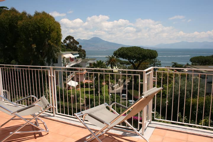 Charming Villa sea Vesuvio view