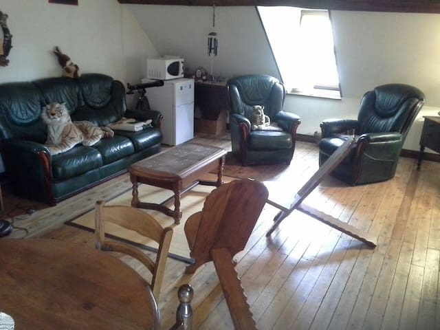 Grande chambre chez l'habitant  - Neung-sur-Beuvron - Talo
