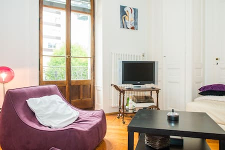lovely flat in the center of geneva - Женева - Квартира