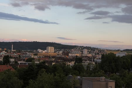 Peaceful room with a view - Biel/Bienne