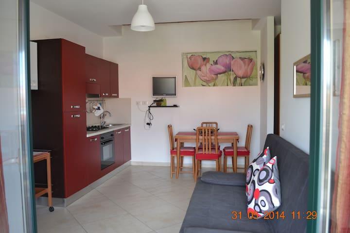 Oasi Peppa casa vacanze - Ascea - Appartement