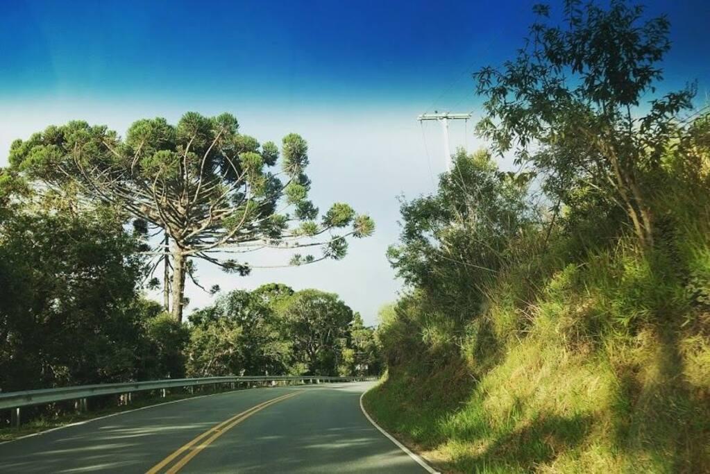 BR 101 - No caminho para o Saci
