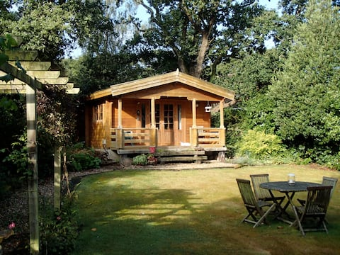 Beautiful lodge in the New Forest