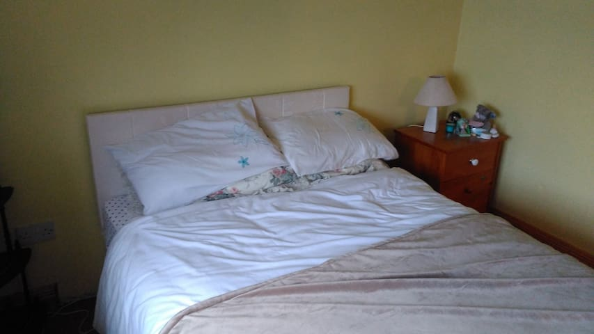 Double bed with electric blanlet.