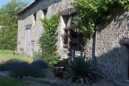 Luxury 18th Century Converted Barn - Saint-Dizier-Leyrenne