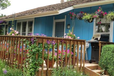 Evergreen Mountain Home near Denver-1