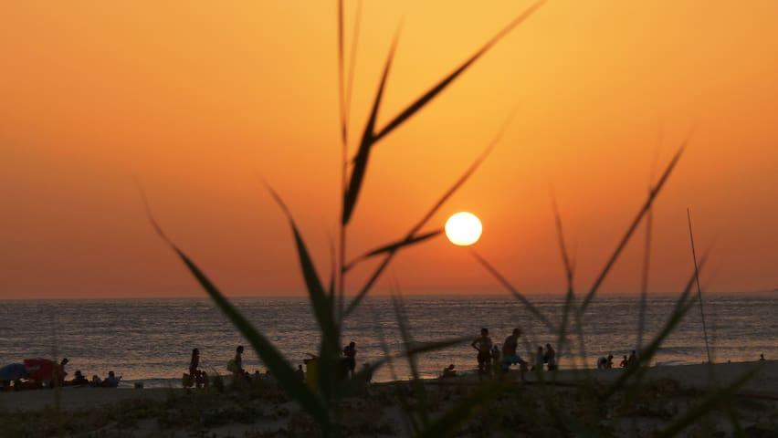 Atico en Zahara de los Atunes (Cadiz)