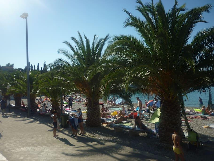 plage à NECUJAM