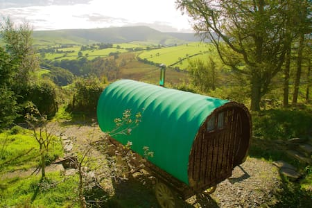 Mountain Top Traditional Gypsy Caravan - Machynlleth