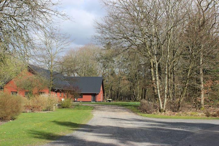 Skovgården 15 km fra Legoland, Lalandia, Lufthavn - Grindsted - Wohnung
