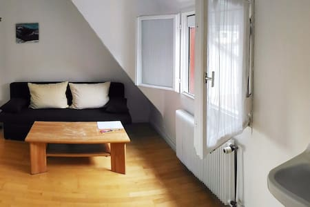 Quiet room close to the Rhine and to Strasbourg - Kehl