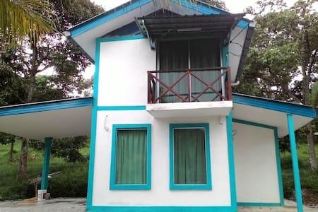 beautiful little house with secret garden