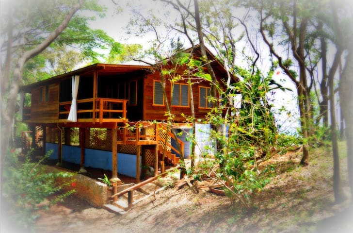 Luxurious curtains provide shade or privacy to eastern-facing jungle-view suites