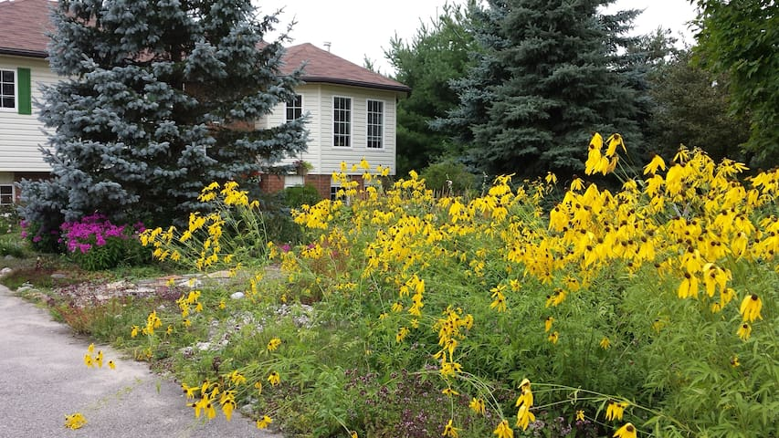 Comfortable space close to Burl's Creek & trails! - Barrie - Casa