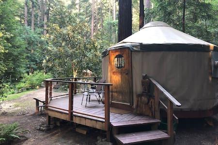 Owl's Nest at Camp Cruz