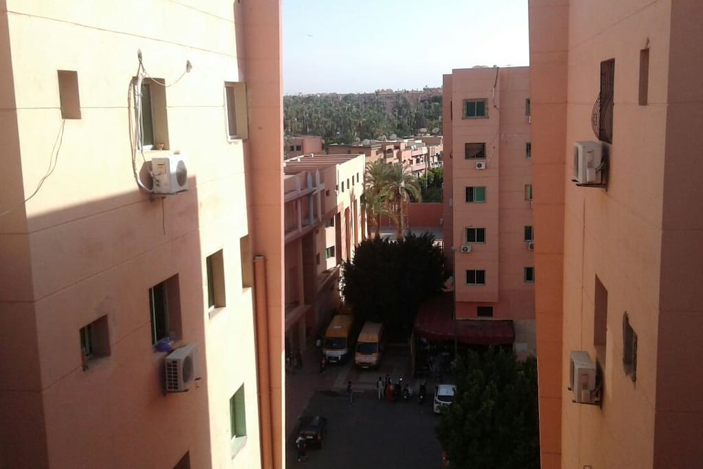 view from the roof
