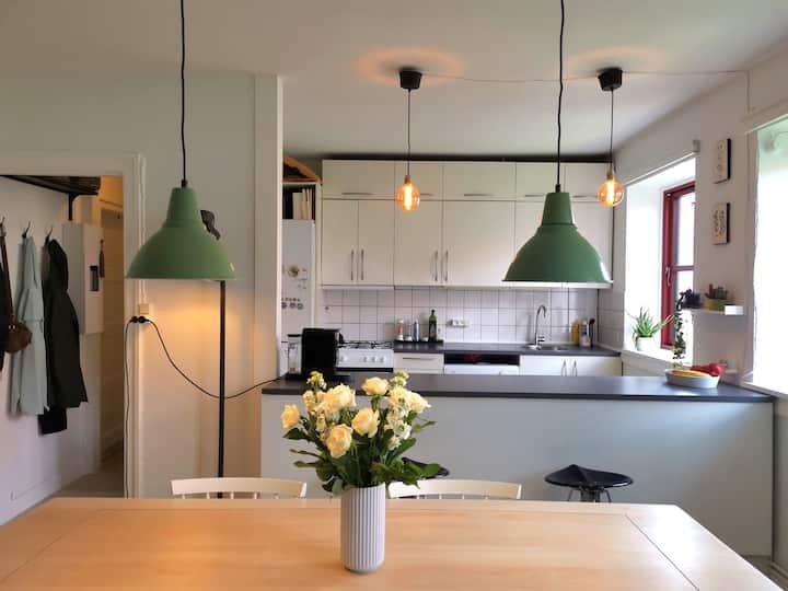 Big, light and comfy flat in Copenhagens best area