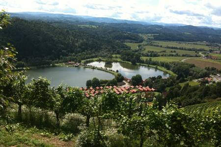 Holzhaus am See - Südsteiermark - Kaindorf - Cabanya