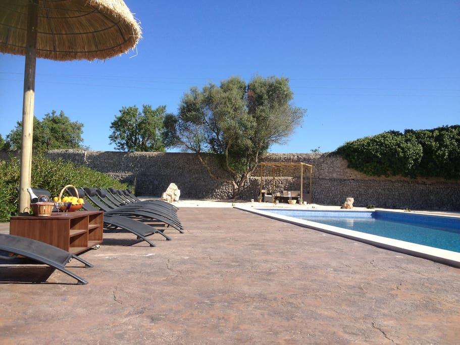 Gran piscina de 12x5 con solarium. completamente cerrada