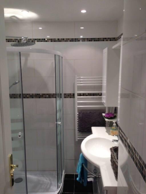 salle des bains avec une douche