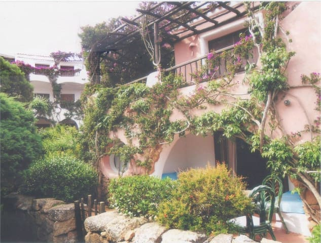 LOVELY APT IN FRONT OF THE SEA - Porto Cervo - Daire