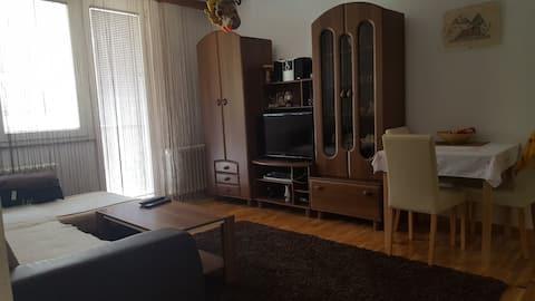 Apartment in Zenica