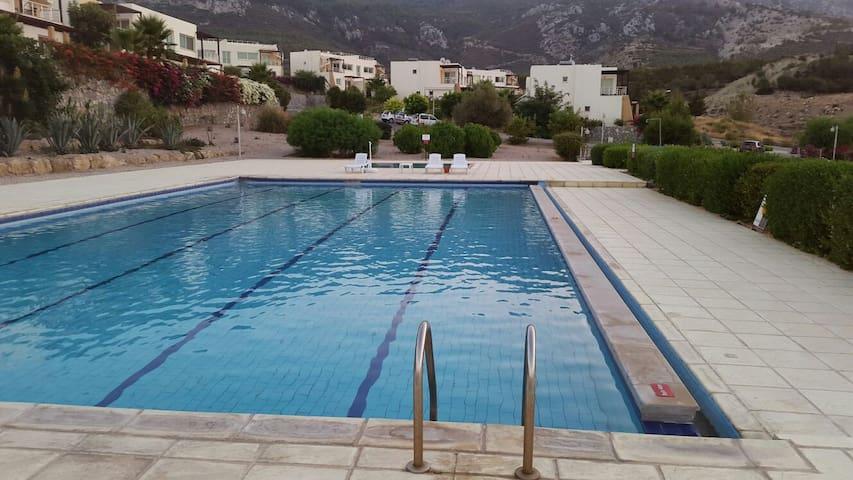 Pool.. pool is half of olimpic..