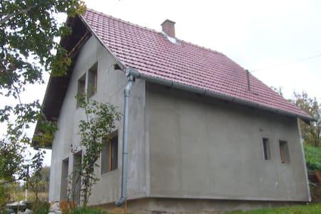 Pécsvárad, Dombay-tó - Pécsvárad - Ev
