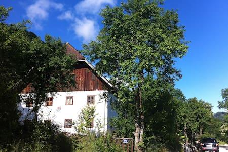 Traum im Salzkammergut - Traunkirchen - Apartamento